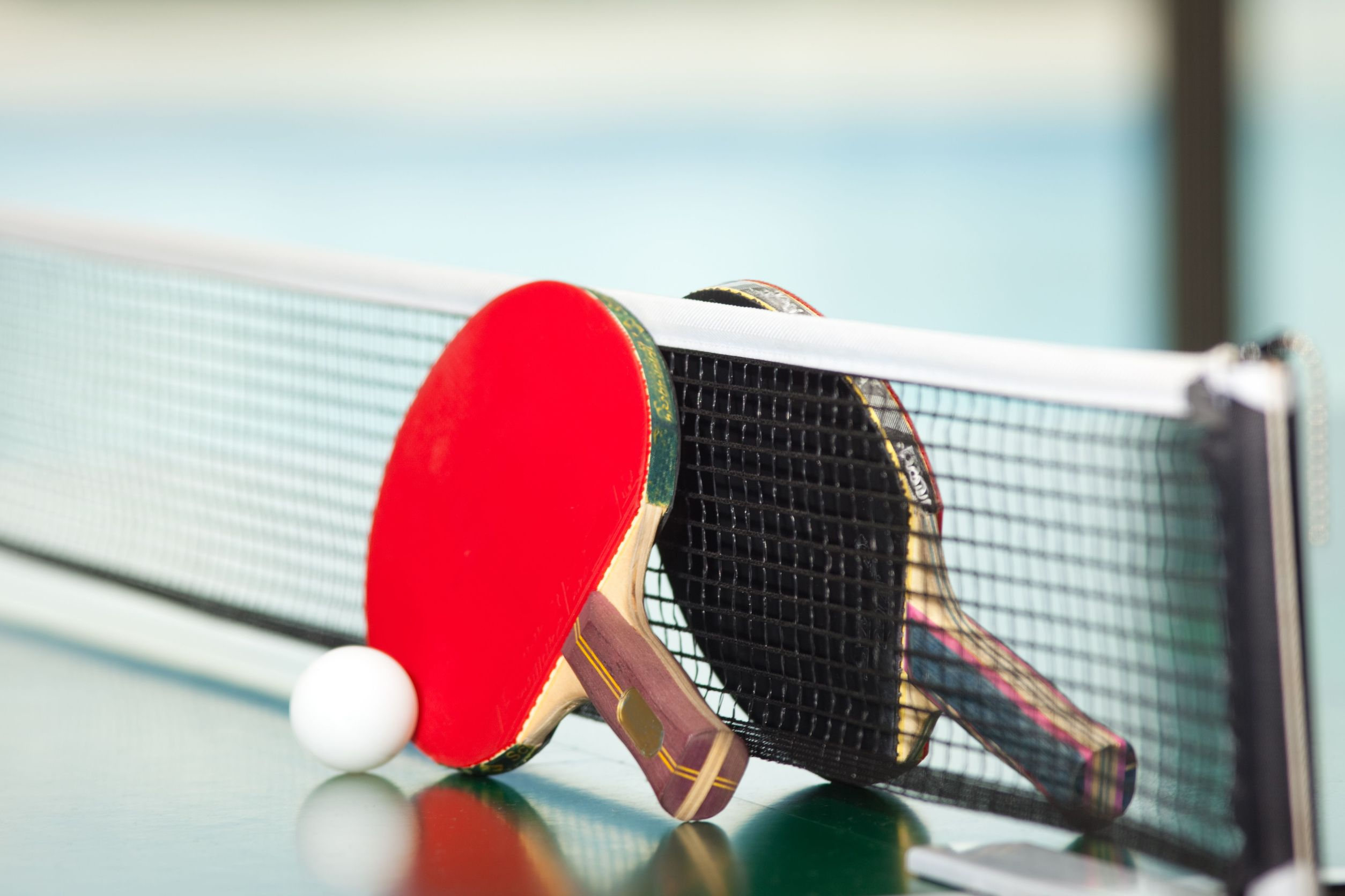 2017Sport Rackets for table tennis at the net 112857